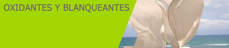 Oxidantes y Blanqueantes Lavanderías - Hostelería | Venta Online